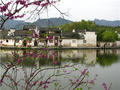 HuangShan-Yixian One Day Tour(Ancient Village of Xidi and Hongcun- Ancient Street in Tunxi)