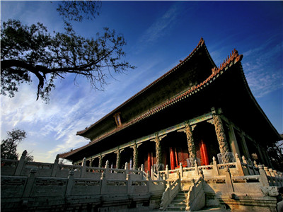 Qufu Confucius Day Tour