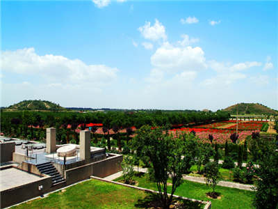 Half-Day Tour to Museum of Terra-Cotta Warriors and Emperor Qinshihuang Mausoleum