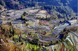Yuan Yang Terraced Field