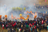 Dragon and Lion Dance Gathering